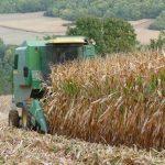 BTSA : le sésame pour les métiers du secteur agricole