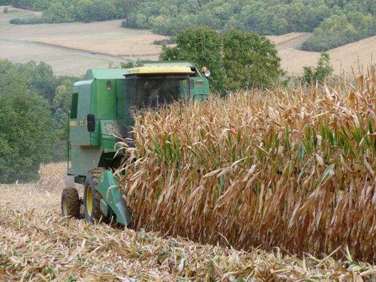 BTSA secteur agricole
